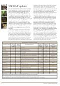 State of Britain's Mammals 2008 - People's Trust for Endangered ... - Page 4