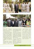 Newsletter issue 33 - Nogamu - Page 7