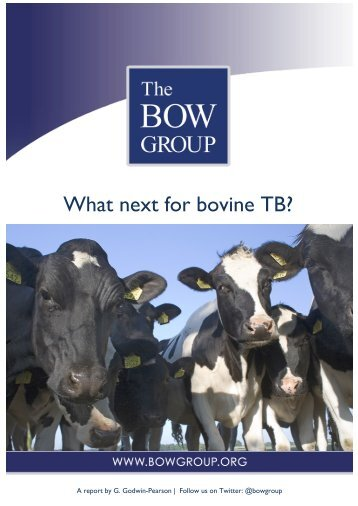 Bow Group - What next for bTB - Mar 2014 Final (1)