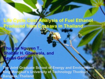 Life Cycle Cost Analysis of Fuel Ethanol Produced from Cassava in ...