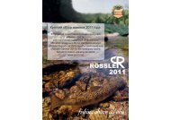 Export Catalogue 2011 RU final.indd - Byron