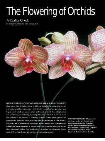 The Flowering of Orchids - Department of Horticulture - Michigan ...