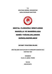 dental florozisli bireylerde maksilla ve mandibulada kemik ...