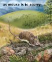 Animalogy - Sylvan Dell Publishing - Page 5