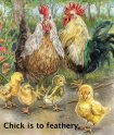 Animalogy - Sylvan Dell Publishing - Page 6