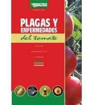 enfermedades del tomate - Vegetable MD Online - Cornell University