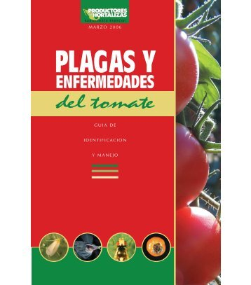 enfermedades del tomate - Vegetable MD Online - Cornell University
