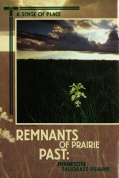 1276 Remnants of Prairie Past: Minnesota Tallgrass ... - webapps8