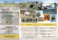 Flyer of BRinK - Outdoor Adventure