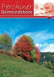 Perchiner Gemeindebote Nr. 05/2010 (3,57 MB)