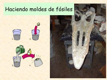 Descarga el tema en formato PDF - Aragosaurus