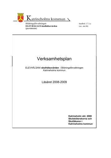 Verksamhetsplan SSK 1.7.1.a grundskolan 2009 (PDF-fil 173 kb)