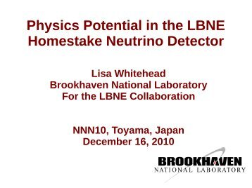 Physics Potential in the LBNE Homestake Neutrino Detector