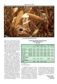 Megújult üvegház a kutatás szolgálatában - MTA Mezőgazdasági ... - Page 4