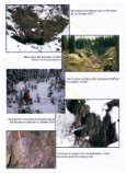 The Silver King Project - Excalibur Resources Ltd. - Page 5