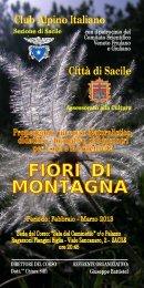 scaricate qui il programma del corso - Club Alpino Italiano ...