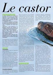 QUELQUES NOTIONS GÉNÉRALES. Le castor ... - Natagora