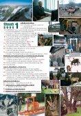 Silva Bohemica č. 1/2005 - ajta.eu - Page 3