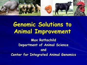 Genomic Solutions to Animal Improvement - Department of Animal ...