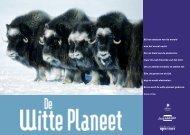 lesmap de witte planeet - Lessen in het donker