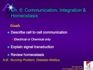 Chapter 6: Communication, Integration, and Homeostasis, Part 1