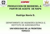 Producción de biodiesel a partir de aceite de raps - Odepa
