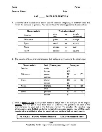 heredity lab worksheet Try these genetics with sponge bob worksheets: genetics with sponge bob   to teaching high school genetics unit that includes worksheets and labs.