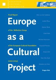 Final Report of the Reflection Group of the European Cultural ...