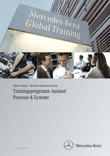 Trainingsprogramm Ausland Prozesse & Systeme - Daimler