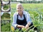 Polletto veggie 2014 - Page 3