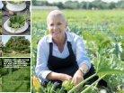Polletto veggie 2014 - Page 5