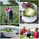 Polletto veggie 2014 - Page 7