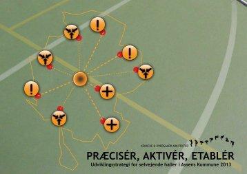 strategirapport 2013.pdf - Aksen - Assens Kommune