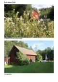 Ferienhaus Troll - Seite 2