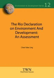 Rio Declaration On Environment and Development: An Assessment