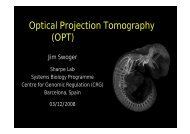 Optical Projection Tomography (OPT) - Biomedicum Imaging Unit ...