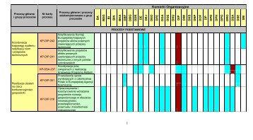 Zestawienie procesów zidentyfikowanych w Ministerstwie ... - Infor