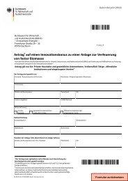Antrag auf einen Innovationsbonus zu einer ... - Kutzner+Weber