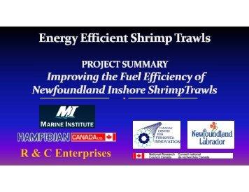Energy Efficient Shrimp Trawl - CCFI