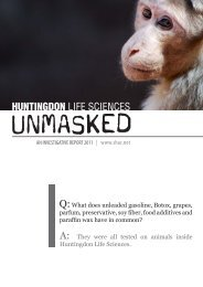 HLS Unmasked - SHAC >> Stop Huntingdon Animal Cruelty