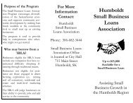 Small Business Loans Brochure - City of Humboldt