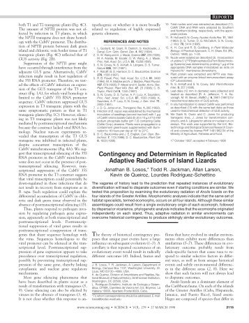 Contingency and Determinism in Replicated Adaptive ... - Science