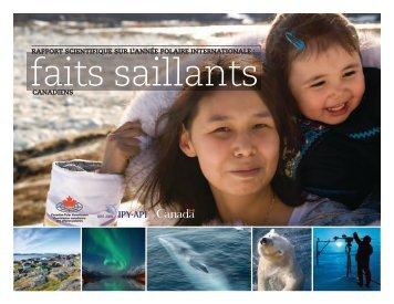 Rapport scientifique sur l'année polaire internationale : faits saillants ...