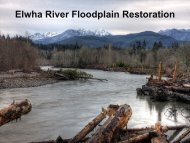 Elwha River Floodplain Restoration