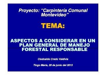 OK CONFERENCIA 28-JUN-2013 - ecoselva