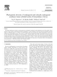 Phylogenetic diversity of endangered and critically endangered ...
