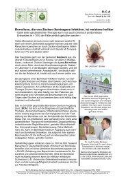 Borreliose, die von Zecken übertragene Infektion, ist meistens heilbar