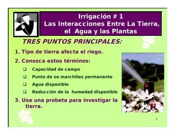 TRES PUNTOS PRINCIPALES: