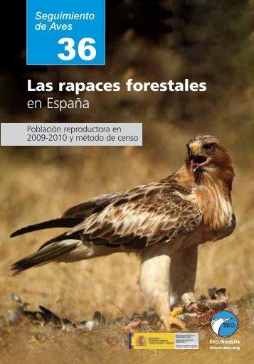 Las rapaces forestales - ResearchGate