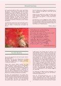 Monatsbrief Juni 2013 - Freie Waldorfschule Wolfratshausen - Seite 3